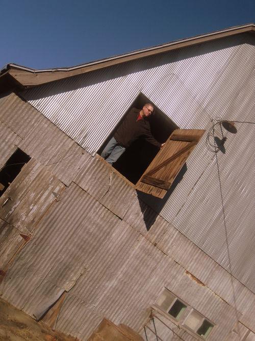 The farm 028