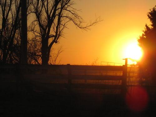 Farm pix 014