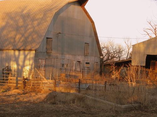 Farm pix 003