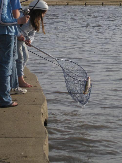 Swimming, fishing 095