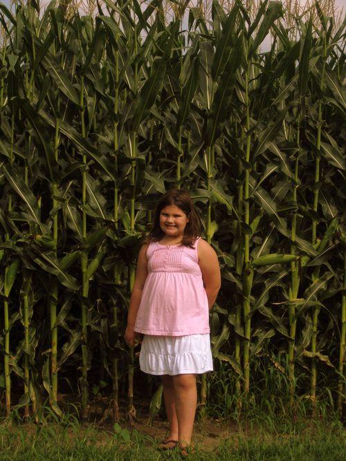Iowa in august 002